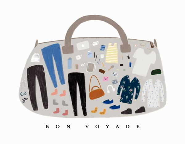 Bon Voyage Suitcase