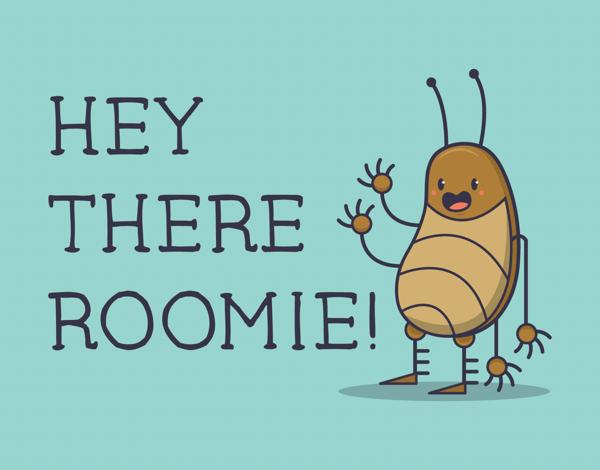 Hey Roomie