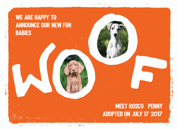 Woof Puppy Announcement