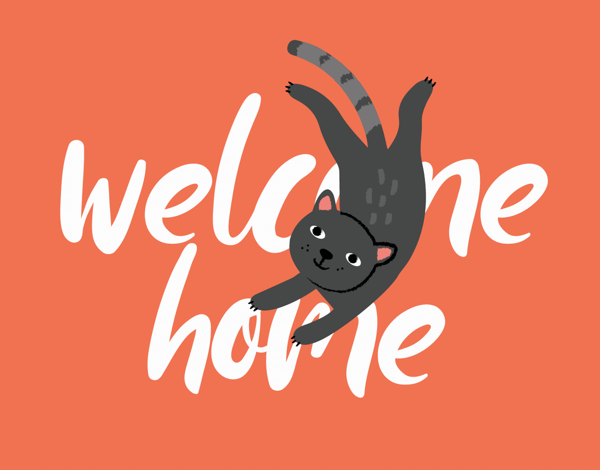 Welcome Home Cat