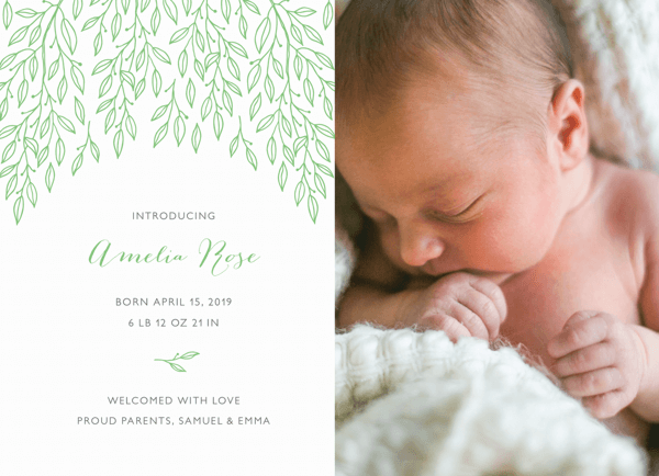 Birch Tree Leaves Announcement