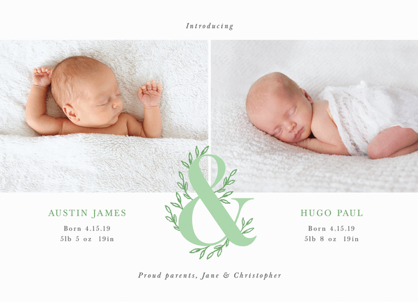 Spring Twins Announcement