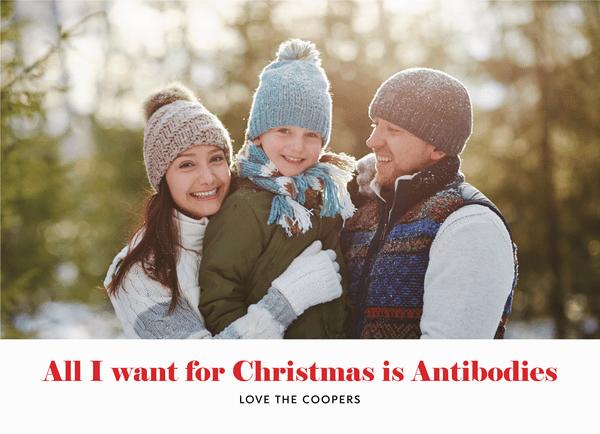 Christmas Antibodies