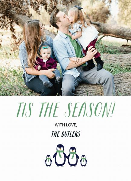 Penguin Family Photo Holiday Card