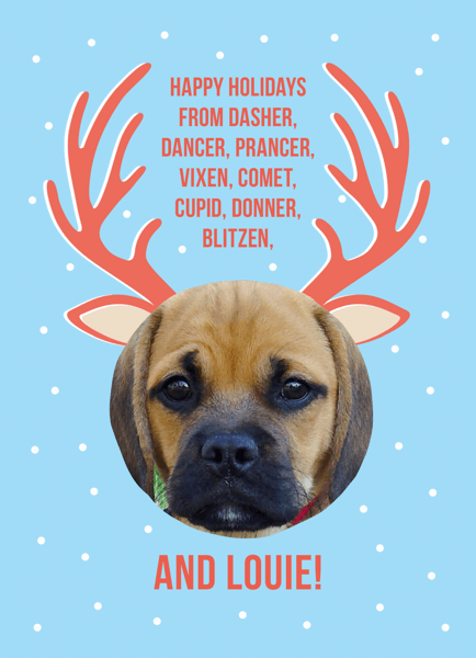 Custom Reindeer Pet Holiday Card