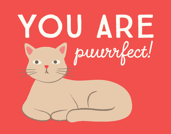 Punny Cat Valentine's Day Card