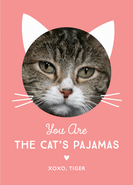 Cat's Pajamas Love Card