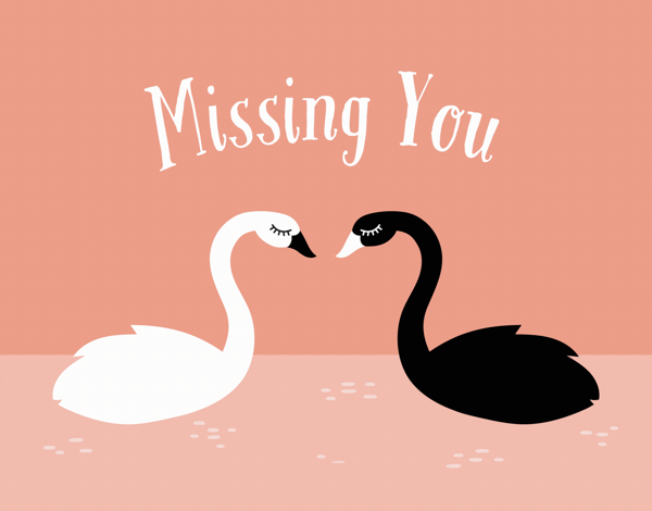 Black and White Swans Miss You Card