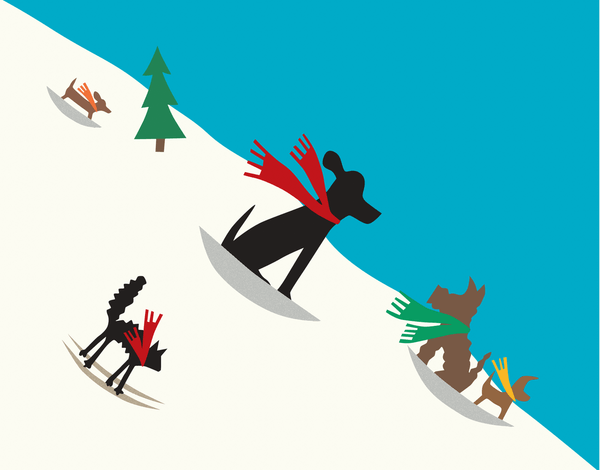 Dogs on Sleds Winter Stationery