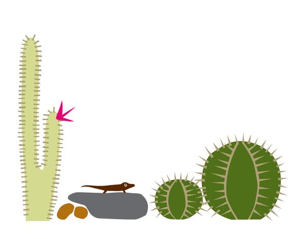 Cactus Lizard Stationery
