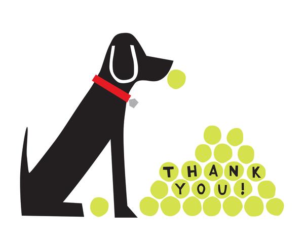Labrador Thank You