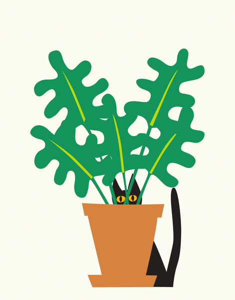 Cat In A Plant
