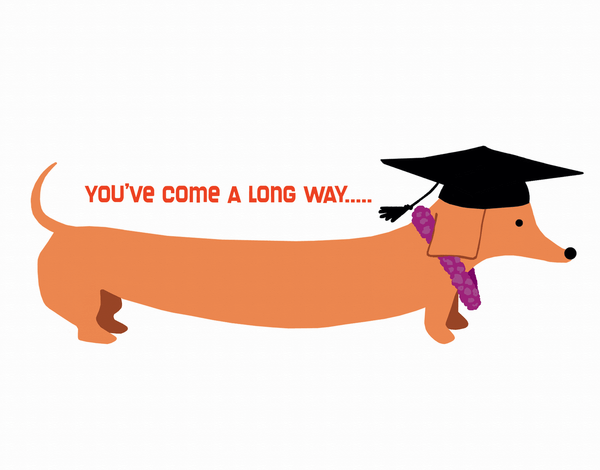 Doxie Graduation Congrats Card