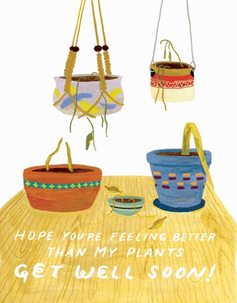 Better Than My Plants