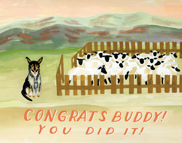 Sheep Dog Congrats