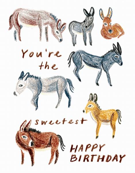 Donkeys Birthday