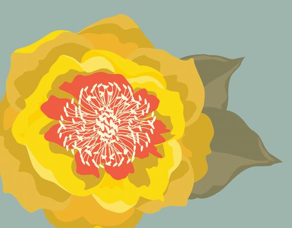 Sunny Blossom Card