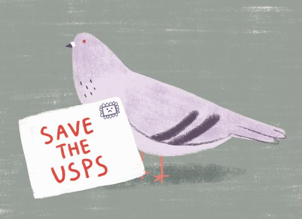 USPS Pigeon