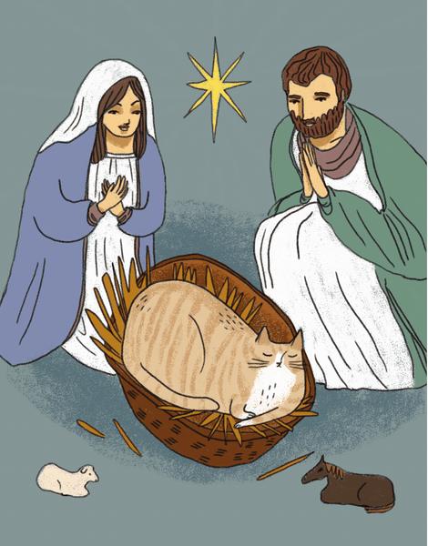 Nativity Cat