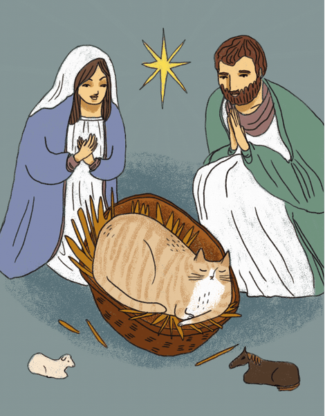 Nativity Cat
