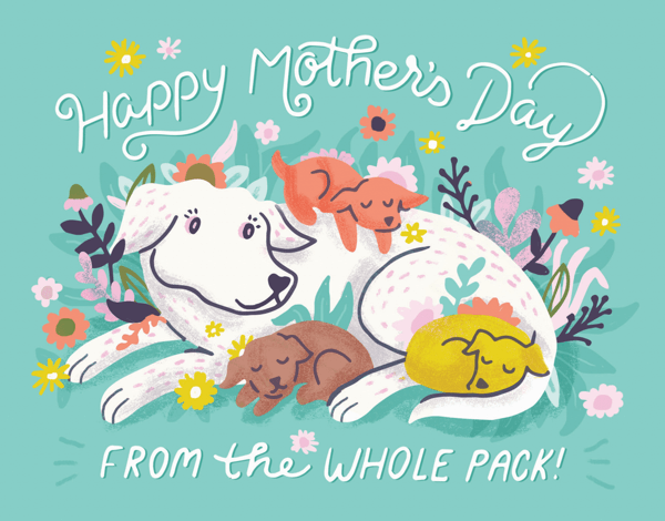From The Whole Pack