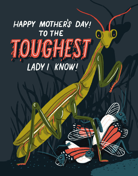 Toughest Lady