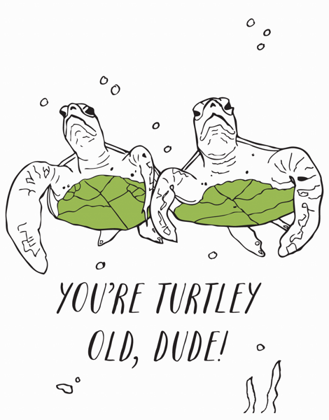 Turtley Old