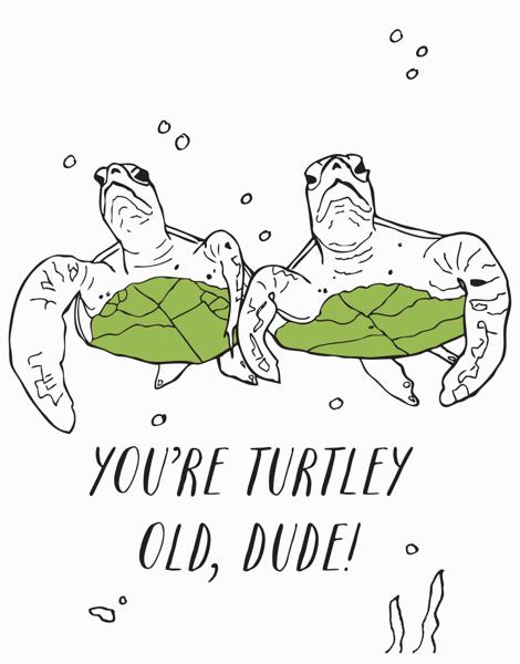 Turtley Old
