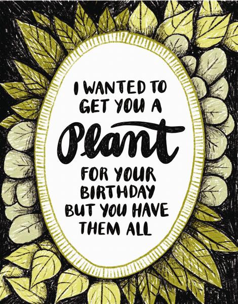 Birthday Plant