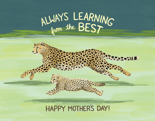 Cheetah Mom