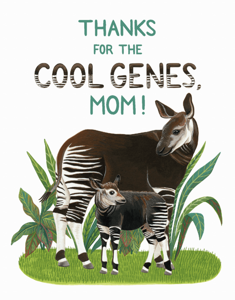 Okapi Mom