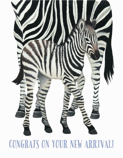 Zebra World