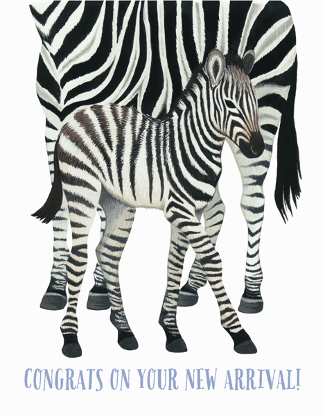 Zebra World