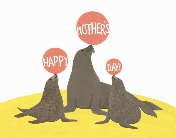 Sea Lion Mom