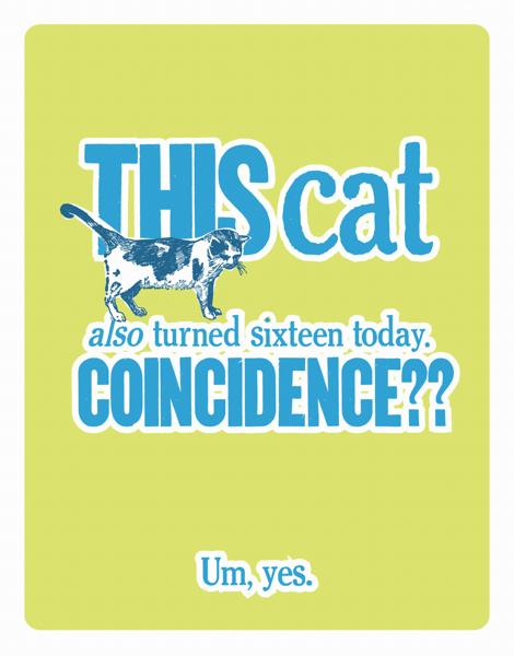 Funny Happy Sixteenth Birthday Card